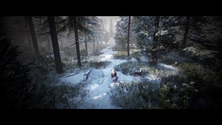 E3 2017 - Bande-annonce de Black Desert Online sur Xbox One et Xbox One X
