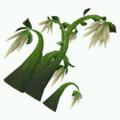 Plant-Silkfall.png