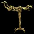 Prop-Medium desert paddle tree.png