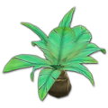 Prop-Jungle palmetto.png
