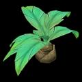 Prop-Flat jungle palmetto.png