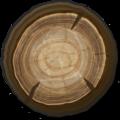 Wood-Plain Wood Log.png
