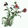 Plant-Earthblood.png