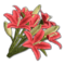 Icon props Theme Human Decorations Flowers LiliesBouquet01 Red 256.png