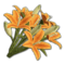 Icon props Theme Human Decorations Flowers LiliesBouquet01 Orange 256.png