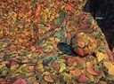 Landmark Texture-Dirt-Autumn Leaves.jpg