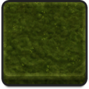 Icon material Biome OldGrowthForest Medium Moss01 256.png