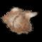 Icon props Theme Halas Deco AnimalHides DrapedAnimalPelt01 256.png