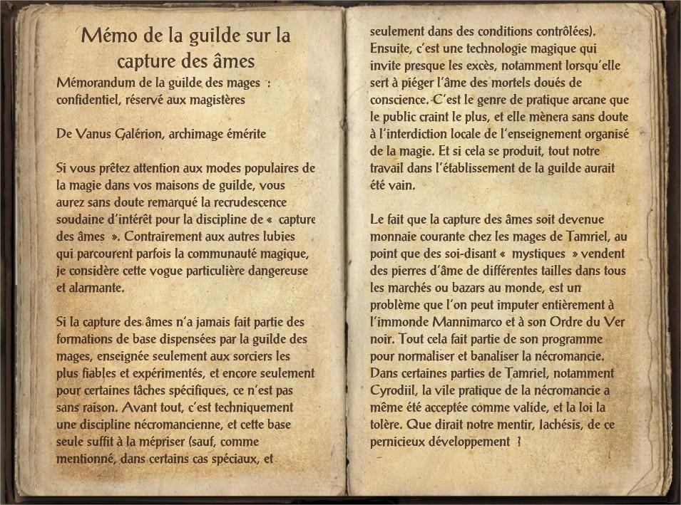 Les notes de la guilde sur la capture des âmes1.jpg