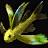 Icônes poissons - Imagespoissons Carpeforestire