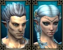 Portrait haut-elfe