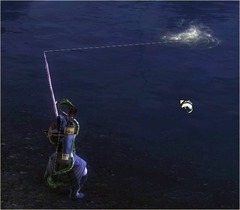 Pêche ca mord