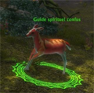 Guide spirituel confus