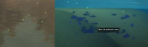 Zone de pêche rare