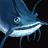 Icônes poissons - Imagespoissons Perchetruitebleue