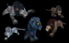 Cataclysm: formes de druide worgen (félin)