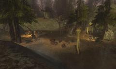 Journal des développeurs - La région de la Forêt Noire