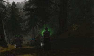 Chemin encaissé dans les Scuttledells