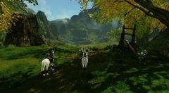 L'état des lieux sur ArcheAge, le MMORPG « sand park »