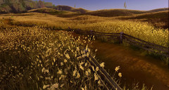 ArcheAge s'illustre