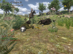 mount-blade-warband-pc-068.jpg