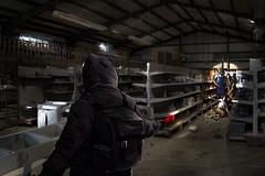L'environnement des jeux de zombies d'Undead Labs