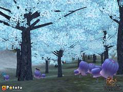 Forêt des licornes