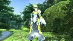 Phantasy Star Online 2 : gameplay en vidéo