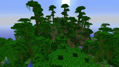 La jungle !
