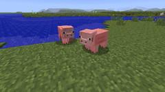 cochon 1.8