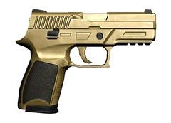Récompenses de bêta-testeurs - P250 Tier2 Gold