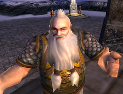 Capitaine des gardes de Thorin
