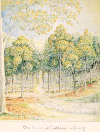 Dessin de Tolkien - The Forest of Lothlorien in Spring