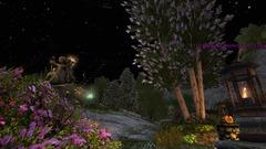 Grande Fête d'Estel - ScreenShot00634