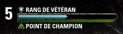 système champion