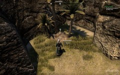 _quest_Izad_s_Treasure_image_eso_2014_01_10_22_25_44_361_m.jpg