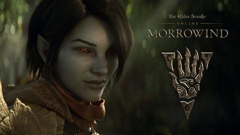The Elder Scrolls Online - Joueurs invités aux studios, Homestead, conception de Seyda Neen : résumé du dernier ESO Live