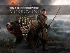 On a testé pour vous...Morrowind