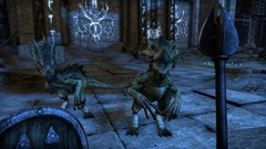 The-Elder-Scrolls-Online_2013_12-11-13_002.jpg