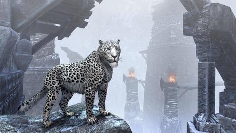 The Elder Scrolls Online - Nouveautés de la Boutique à Couronnes en janvier