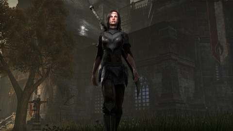 The Elder Scrolls Online - Elder Scrolls Online à la PAX Prime de Seattle pour envisager l'avenir du MMO