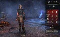 Guide des premiers pas sur The Elder Scrolls Online