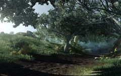 Décor et PNJ - forêt