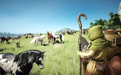 Les montures et le housing de Black Desert en images