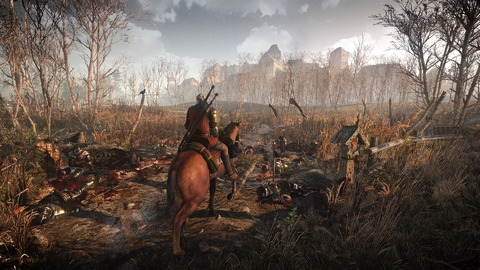 The Witcher 3: Wild Hunt soigne son image