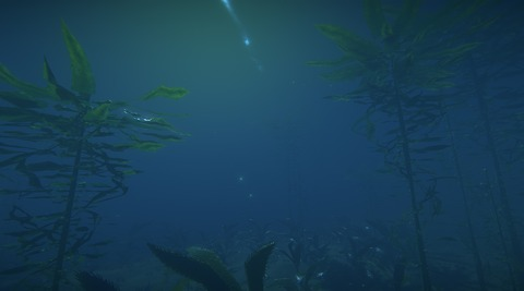 Biome sous-marin de Landmark