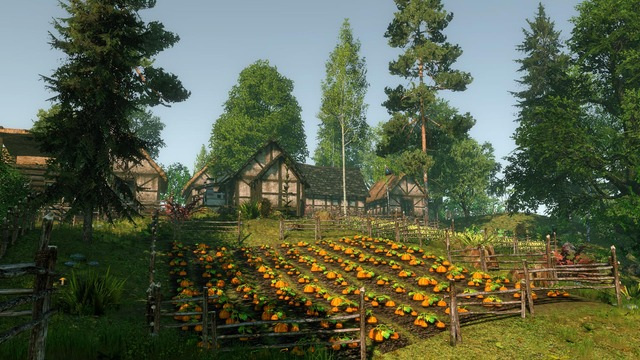 Images de Life is Feudal: MMO