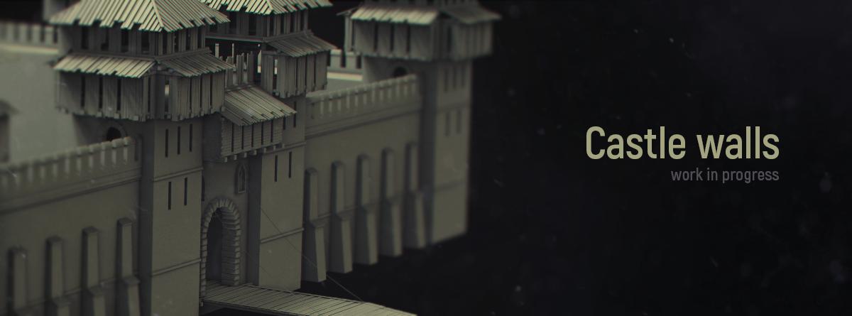 LIF murs chateaux 1