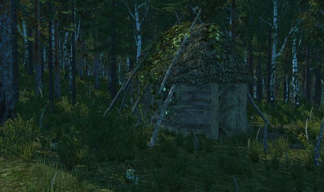 Une cabane construite par un joueur