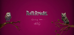 Projet « Pottermore », ou quand l'on reparle d'un MMO Harry Potter